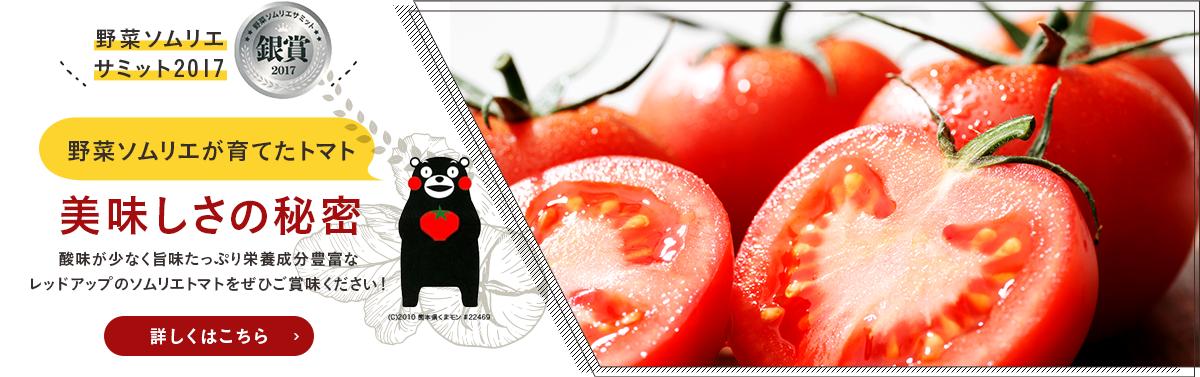 野菜ソムリエサミット2017 銀賞 美味しさの秘密 酸味が少なく旨味たっぷり栄養成分豊富な                   レッドアップのソムリエトマトをぜひご賞味ください!