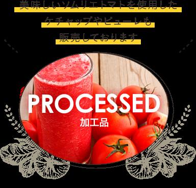 加工品 美味しいソムリエトマトを使用したケチャップやピューレも販売しております