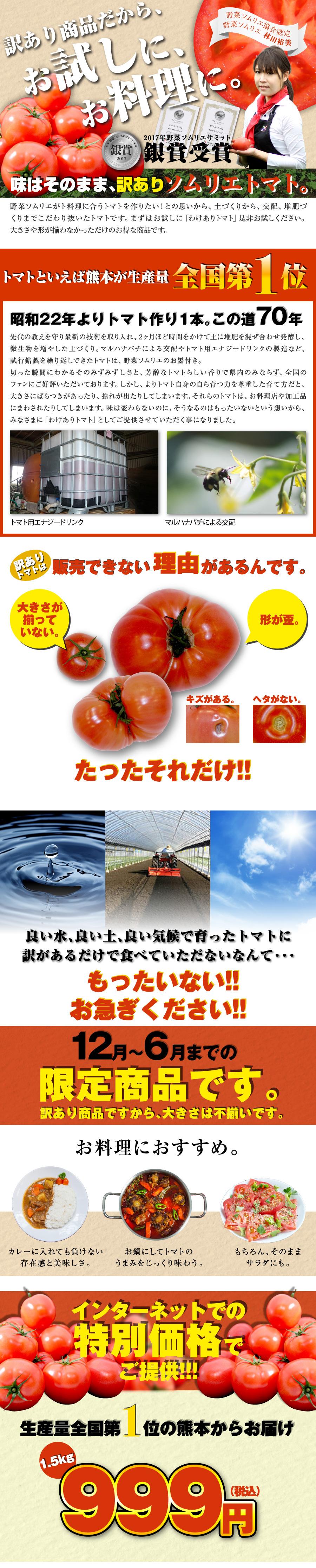 味はそのままで特別価格の訳ありトマト1.5kg