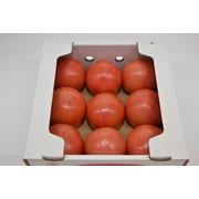麗容 トマト 2kg