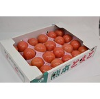 麗容 トマト 4kg